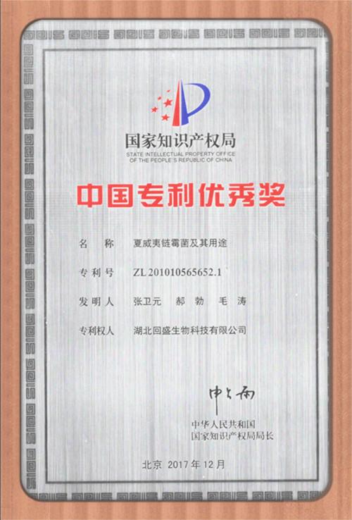 中國專利優秀獎