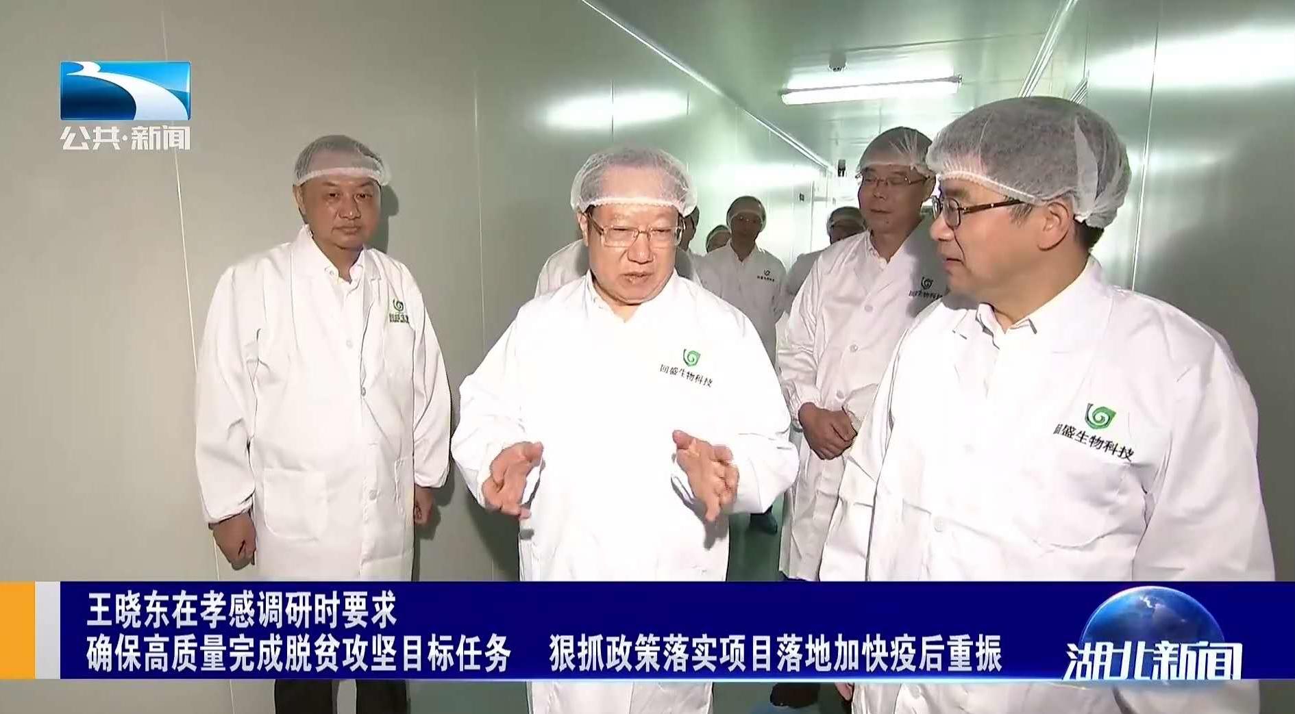 省委副书记、省长王晓东莅临澳门皇冠娱乐网站调研